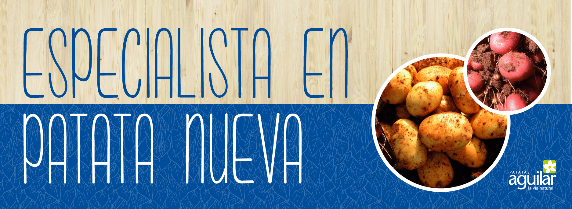 banner-newpotato_ES