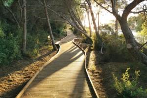 Itinerarios-del-parque-natural-de-la-Devesa-Albufera